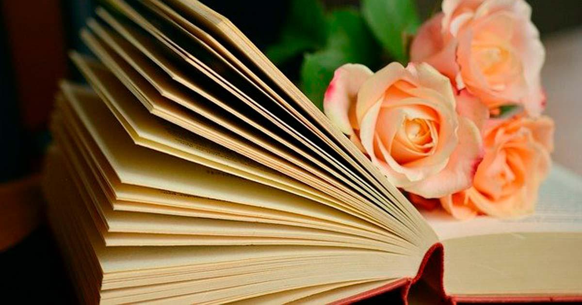 上白石萌音も愛読「翻訳できない世界のことば」の一覧とレビュー