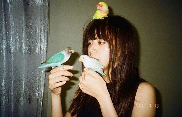 鳥好きの池田エライザ!ペットのインコの種類や名前は?