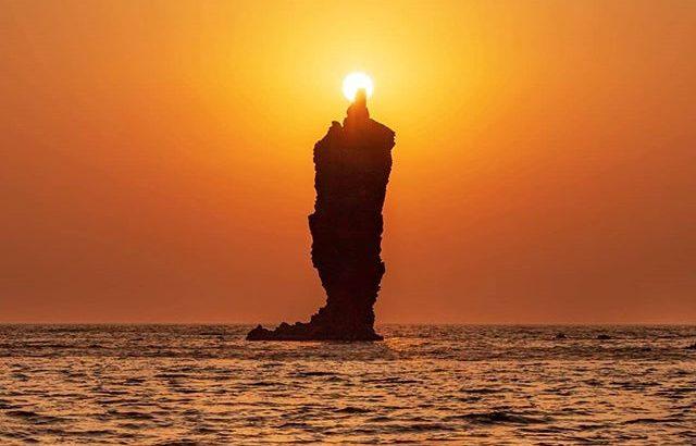 イッテQに登場!隠岐の島のローソク島の見頃やアクセスは?